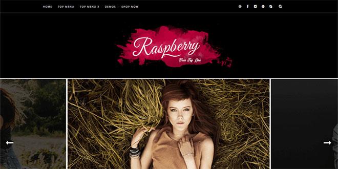 Raspberry Responsive Blogger Template